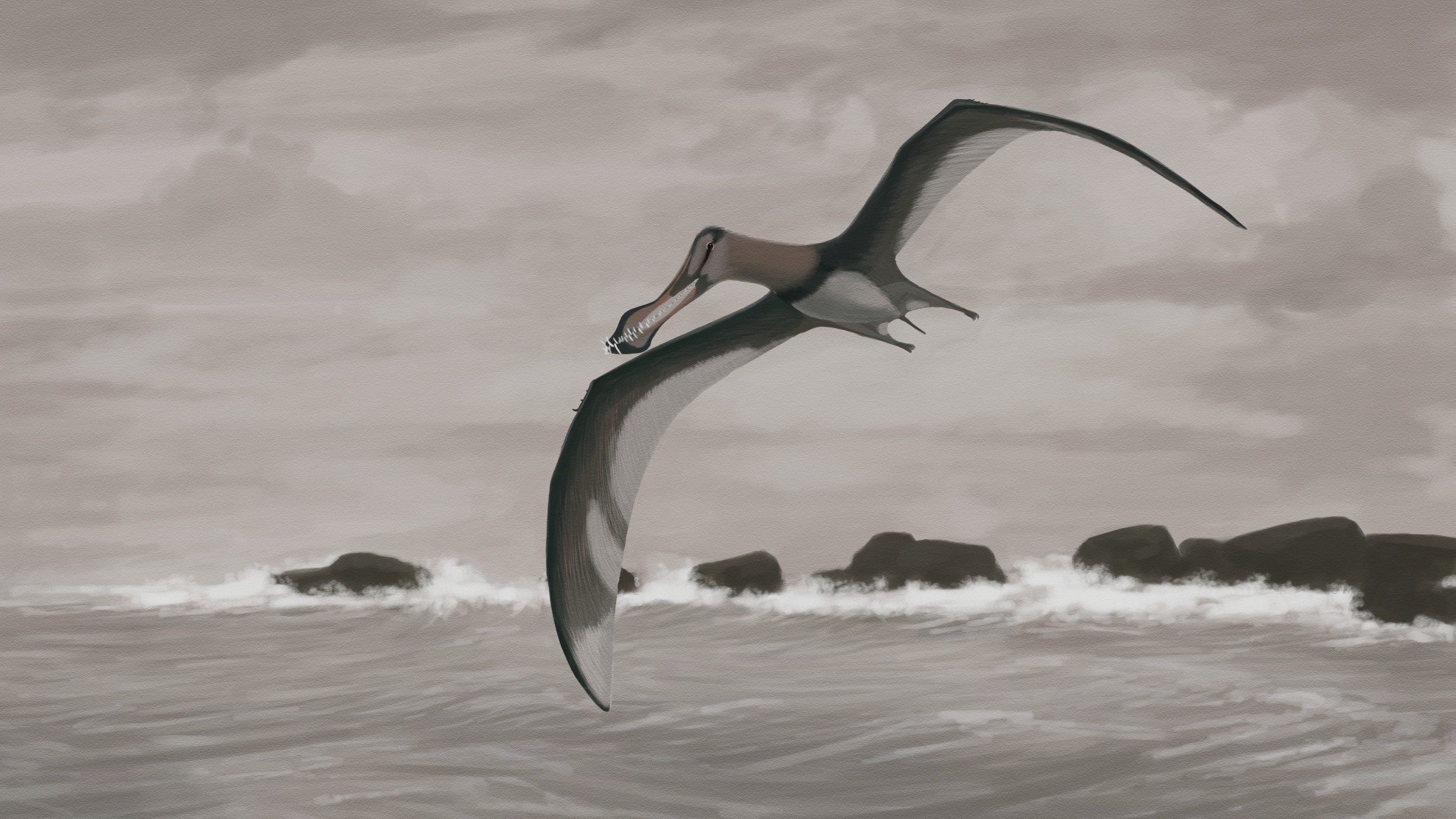 Pterodactyls Probably Didn't Fly Like We Think They Did