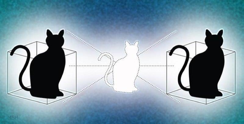 cat-state entanglement physics quantum-mechanics spooky-action video
