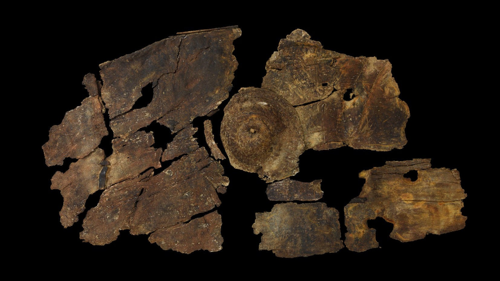 2300-Year-Old Bark Shield Showcases A Previously Unknown Iron Age Technology