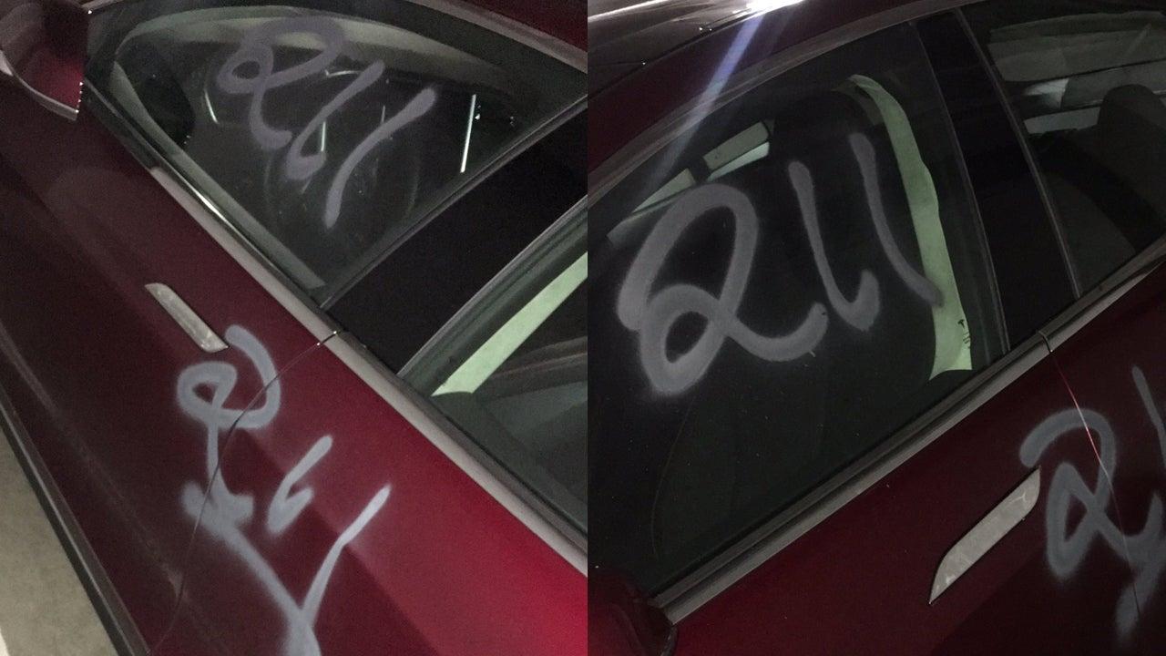 san-francisco vandals