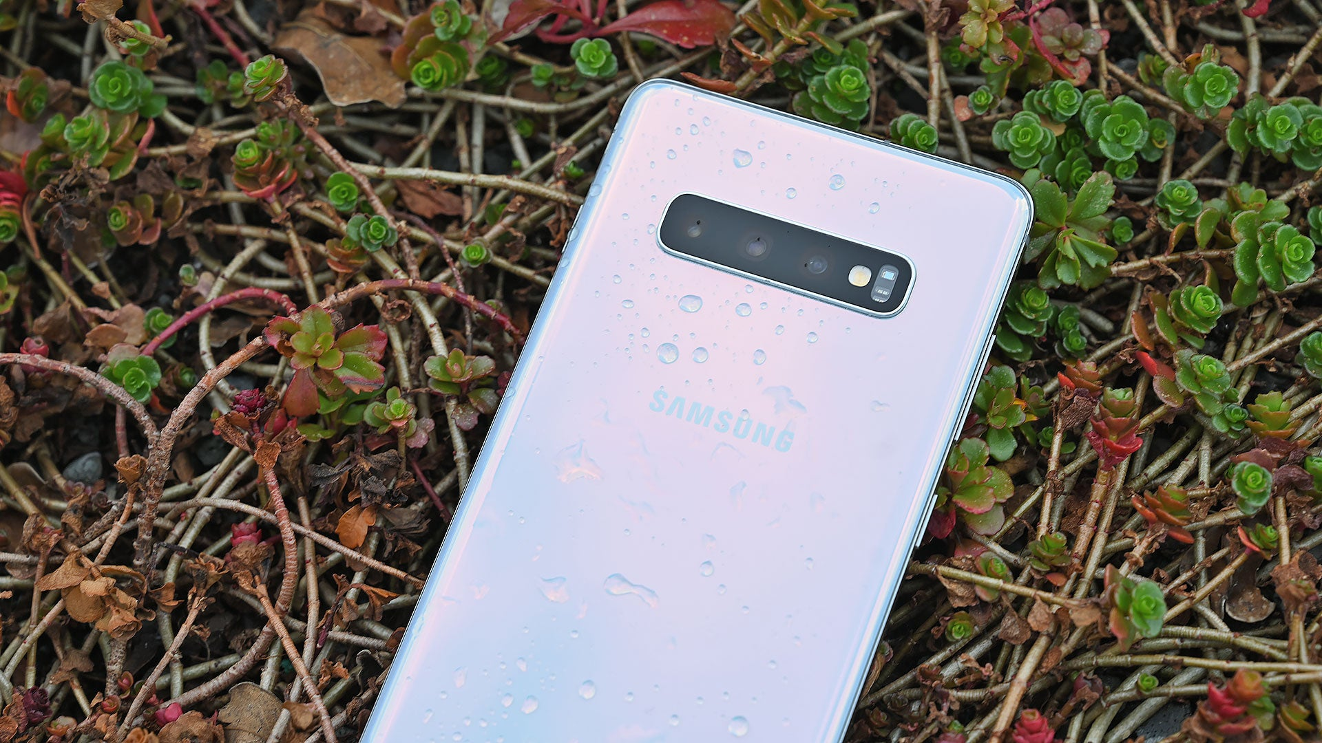 New Update Gives The Galaxy S10 A Real Night Mode