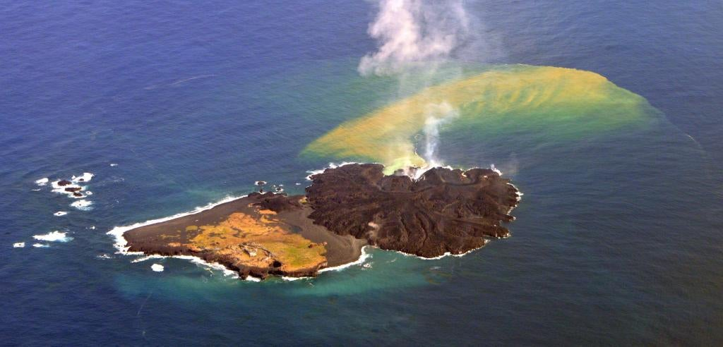 How Bird Poop Helps Populate a New Volcanic Island With Life