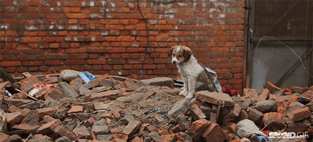 Short documentary: What it's like to be in Nepal after the earthquake
