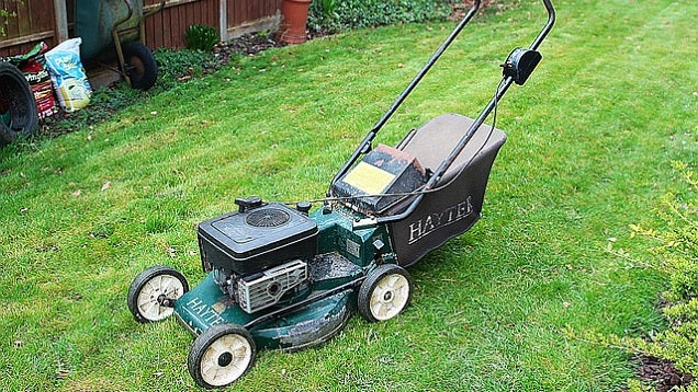Stay Safe and Avoid Damaging Your Lawnmower by Walking the Route First