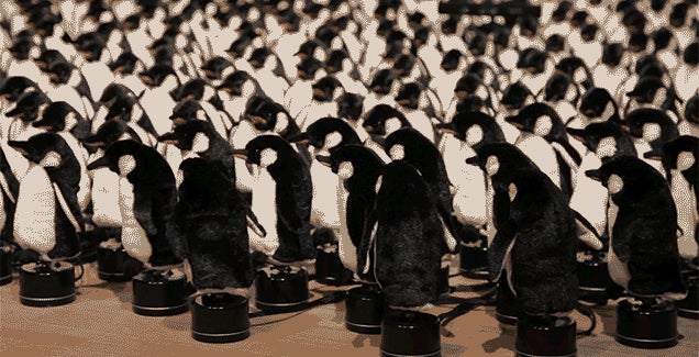 An Army of Plush Penguins Move in Motion to Make a Mirror