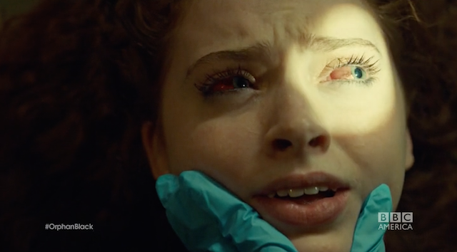 Orphan Black's Crazy Bioweapon Actually Exists In Nature