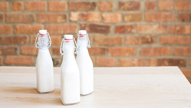 Follow This Recipe To Make Milk From Any Kind Of Nut