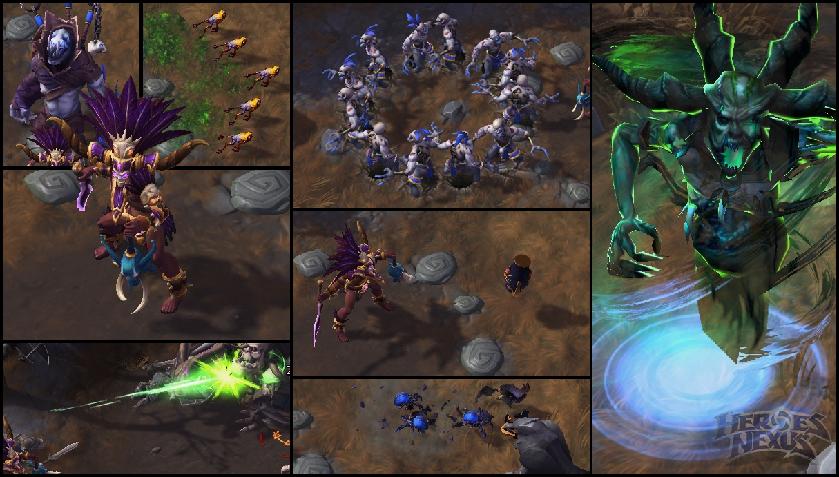 Heroes Of The Storm Inspired A Character Change In Diablo III