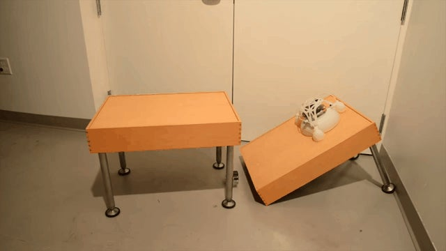 This Jumping Robot Is Extremely Cute... And Very Difficult to Destroy