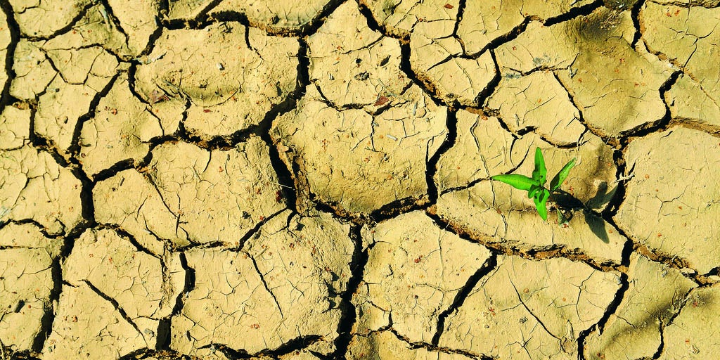 Cutting Emissions Through Biofuels Will Lead To Water Shortages