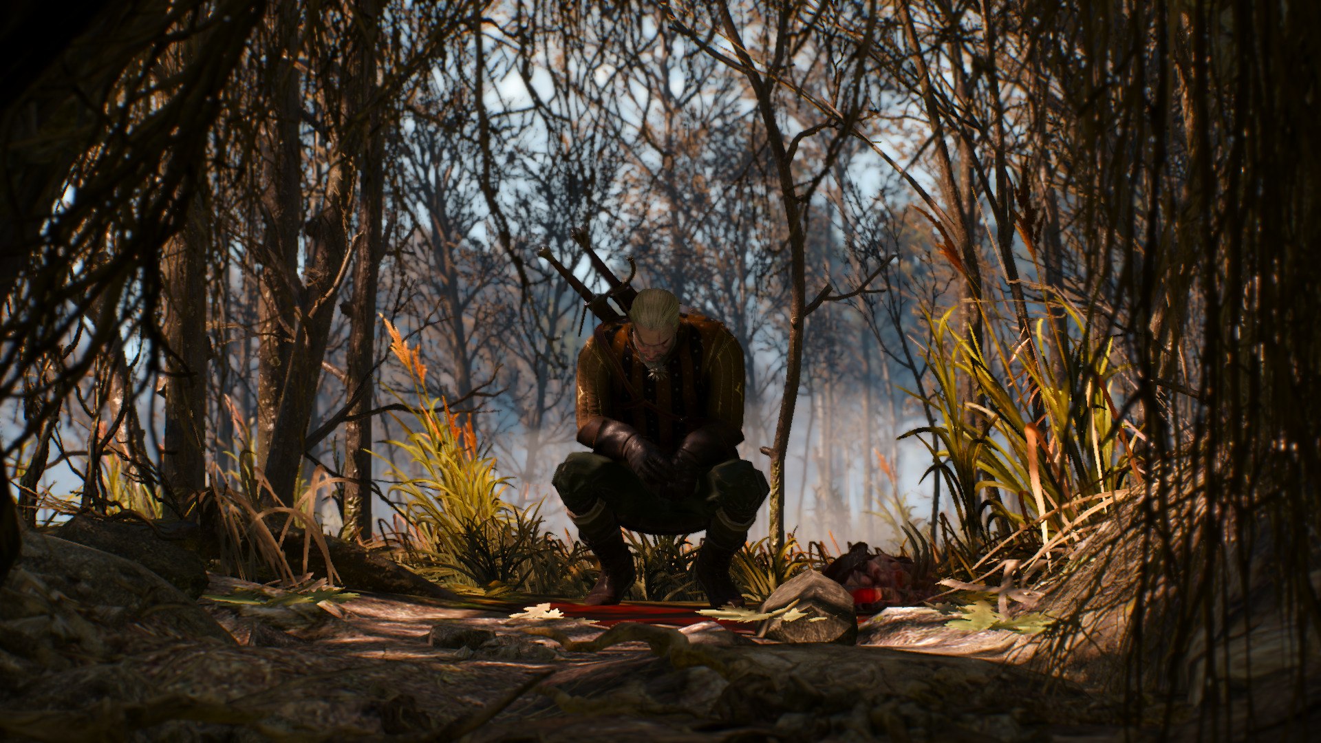 The Witcher 3, As Told Through Beautiful Screenshots