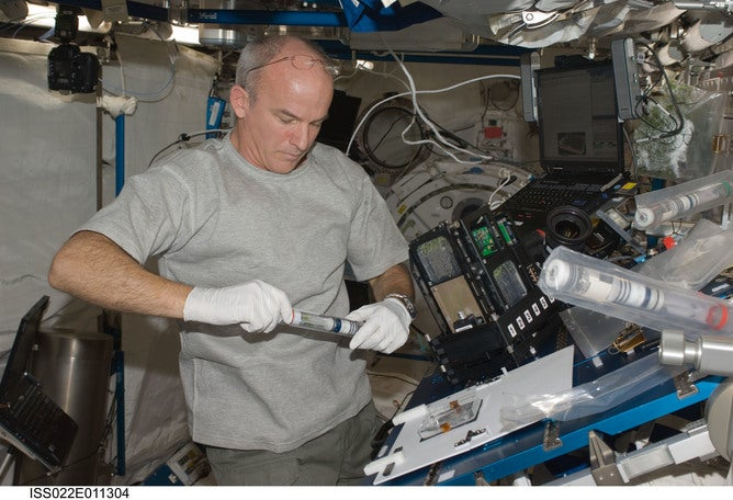 Taking Plants Off Planet — How Do They Grow in Zero Gravity?