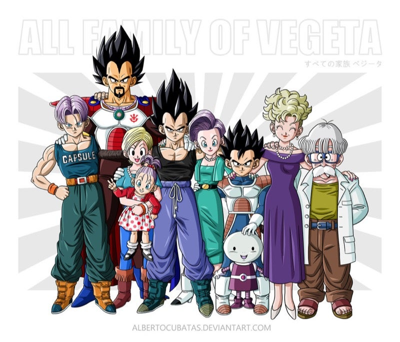 Dragon Ball Family Portraits