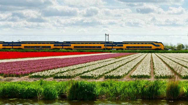 The Dutch Railway Could Run Solely on Wind Power By 2018