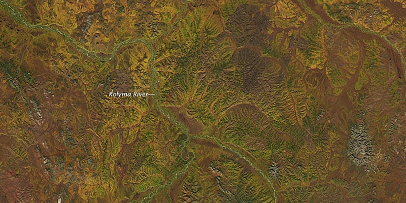 Fall Colours Look Even Better From Space