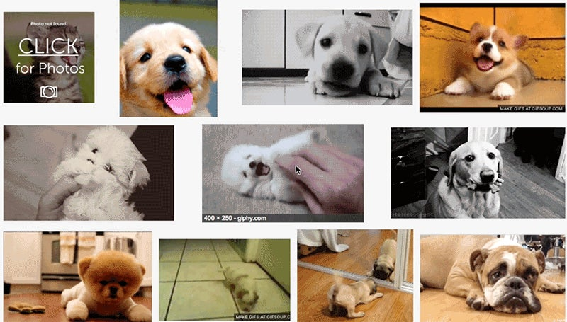 How to Animate GIFs in Your Google Search Results