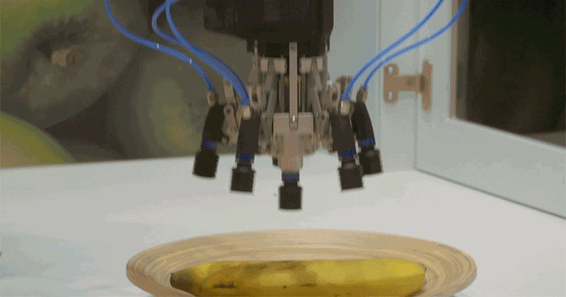 Why Is It So Hard For Robots to Pick Up Fruit?