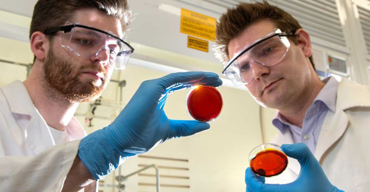 Material Made from Industrial Waste and Orange Peel Sucks Mercury Out of Water