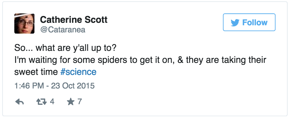 Catherine Scott Spent All of Friday Afternoon Waiting for Her Spiders to Have Sex