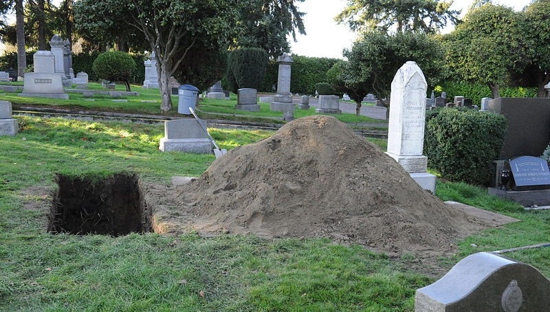 Scare Yourself With Science: Here's How To Sniff Out Bodies In Shallow Graves