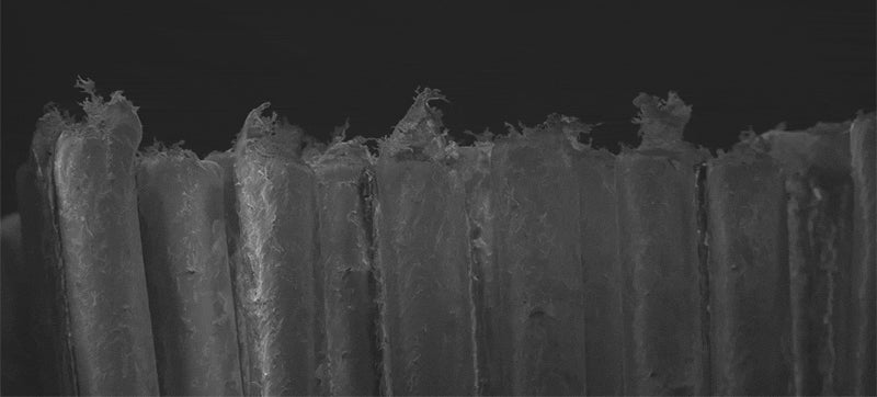 Check out the difference between a new and used toothbrush in this cool microscopic view