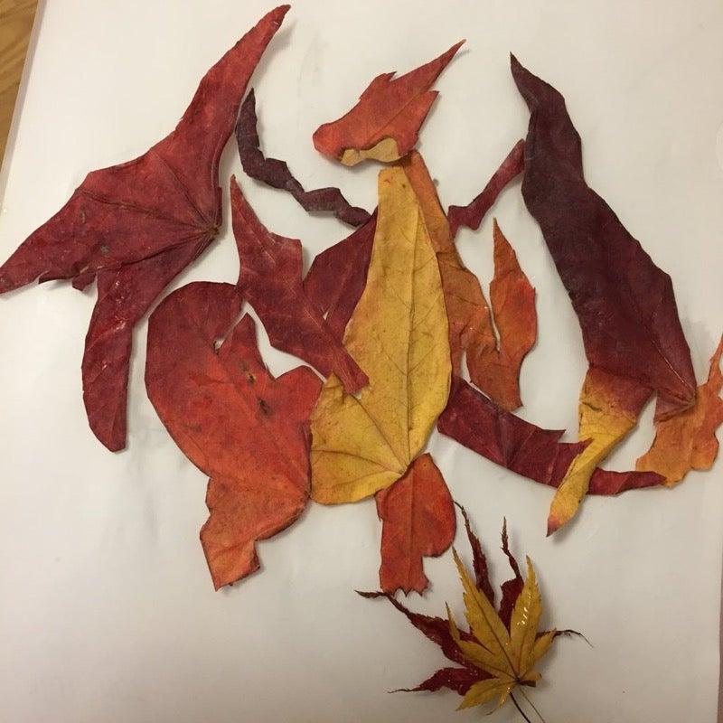 Leaf Charizard Is A Fire Hazard