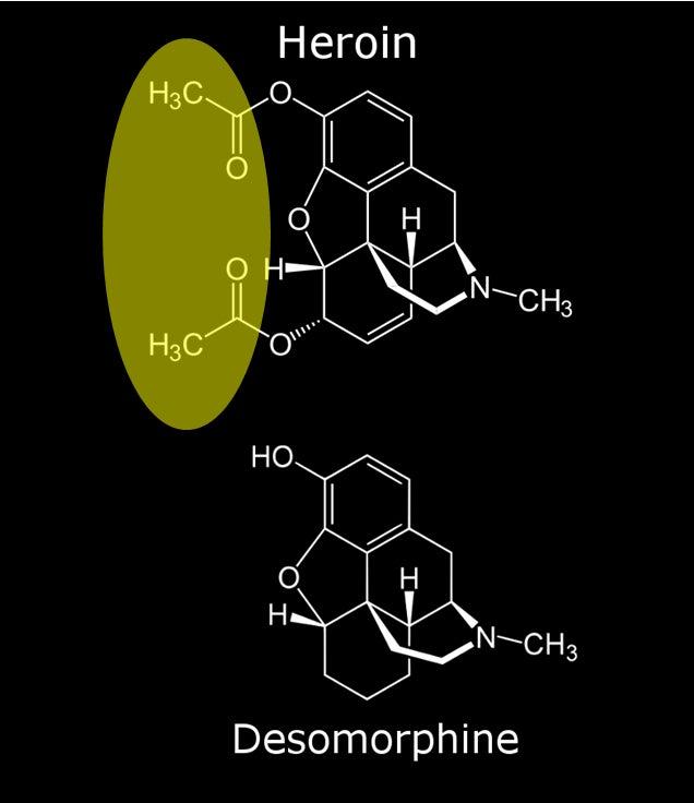Does Stomach Acid Neutralize Ionized Alkaline Water