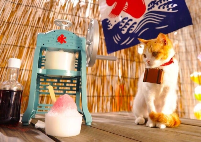 Cats Are the Cutest Guides to Japan