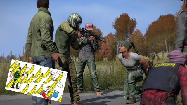 The Honest Guide to DayZ