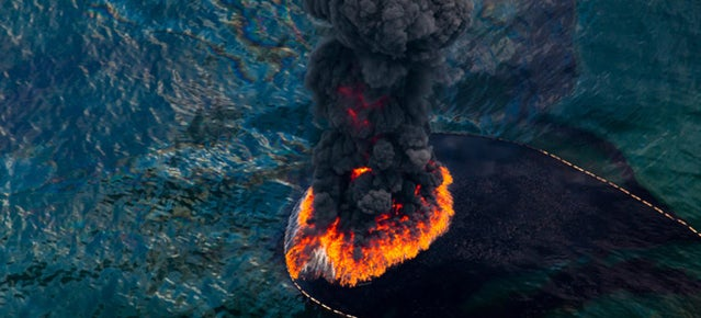 Strikingly beautiful pictures show the horrors of the BP oil spill