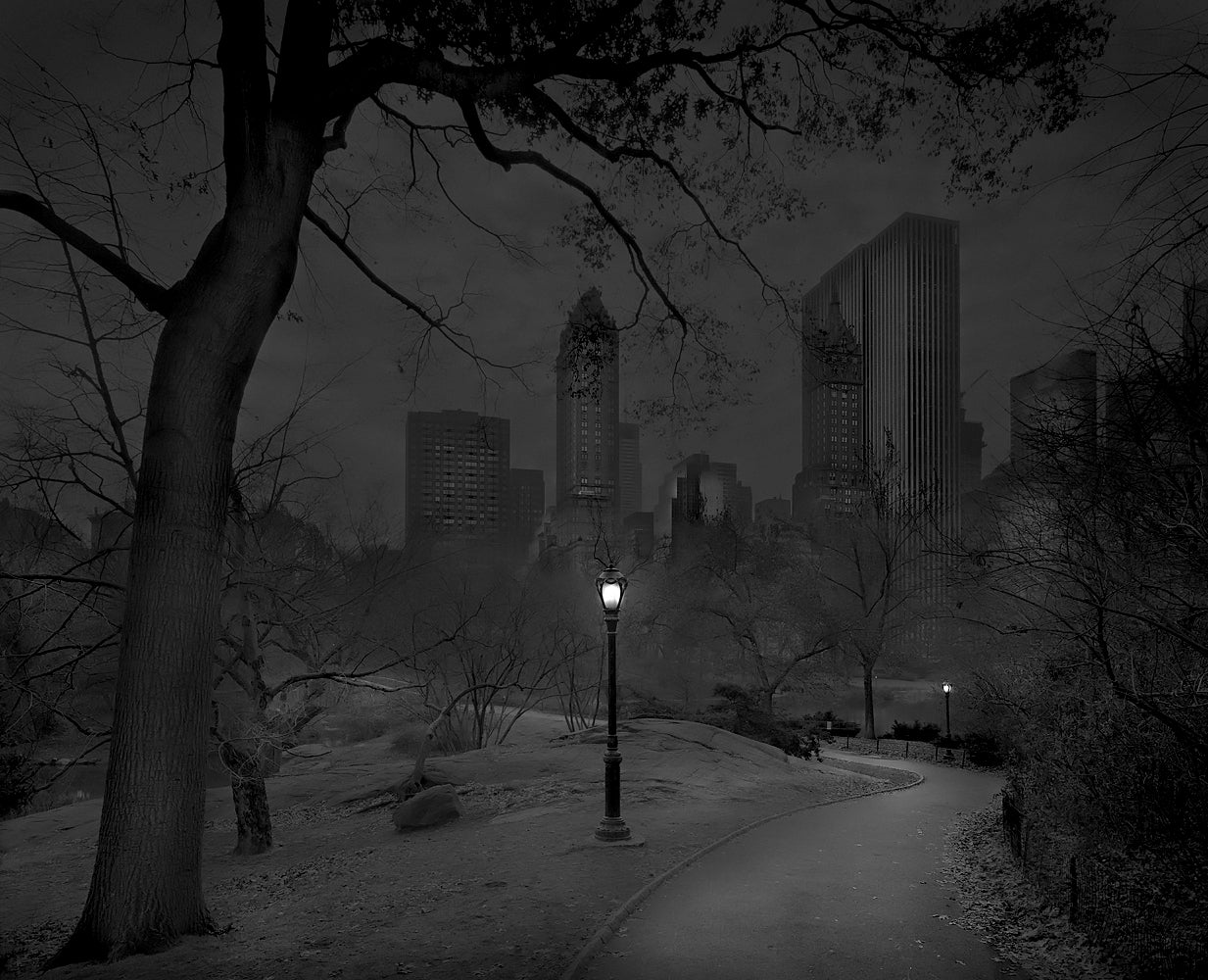 New York's Central Park never looked so beautiful as in these photos