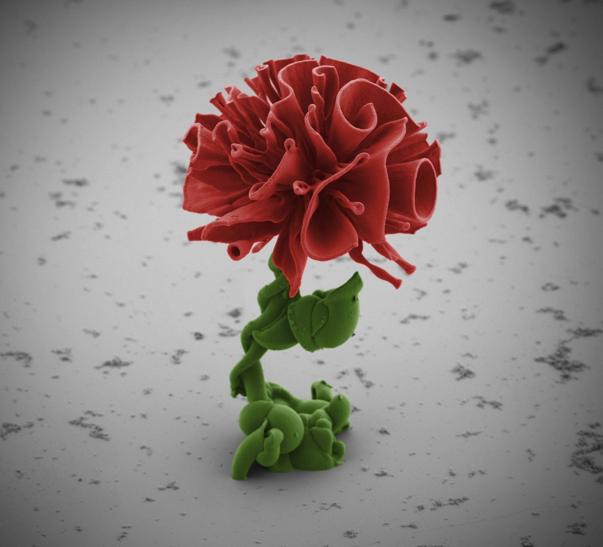 8 Tiny Sculptures You Can Only See With an Electron Microscope