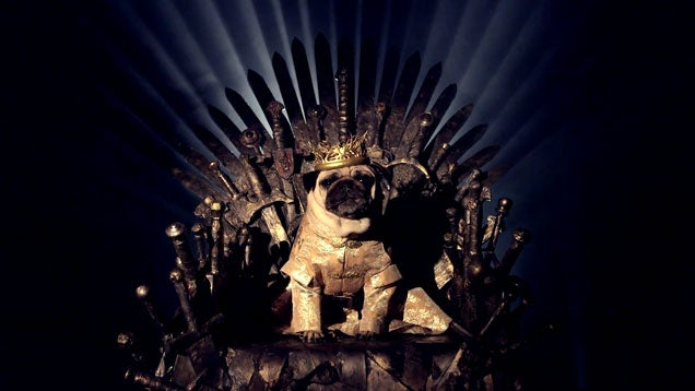 The Game of Thrones Cast, Now In Pug Form