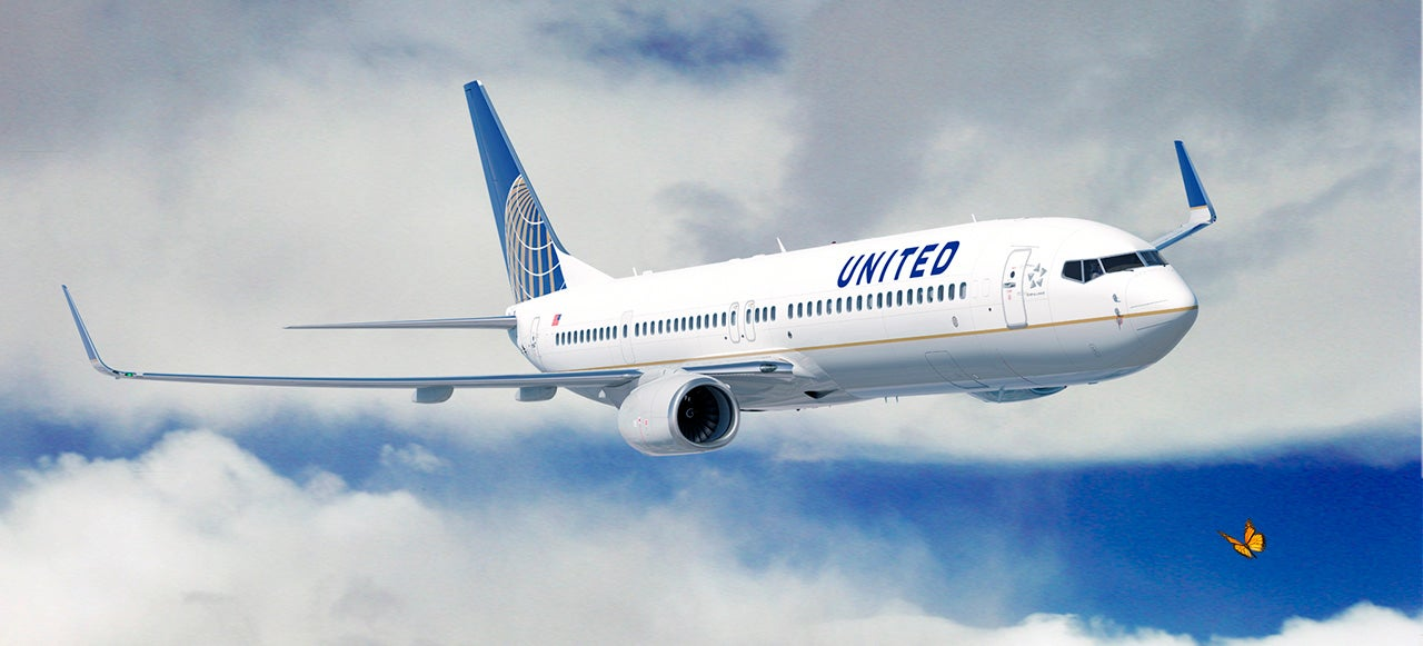 United Is Using Its Planes To Track Butterflies and Birds From Above