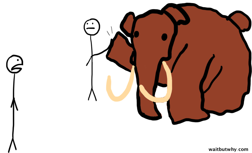 Taming the Mammoth: Why You Should Stop Caring What Other People Think
