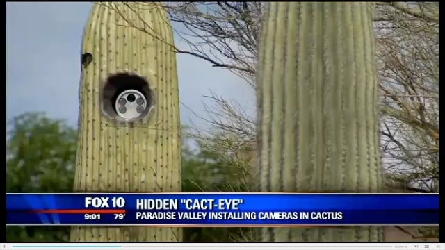 Great, Now Even Cacti Can Spy On Us