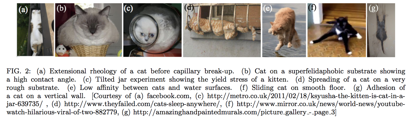 Liquid Cats, Vagina Speakers And More From The Ig Nobel