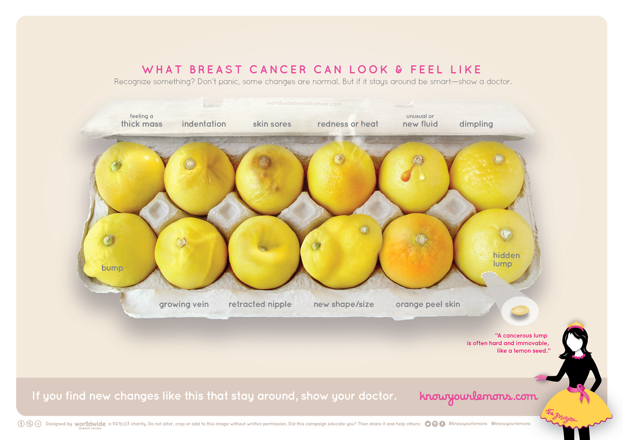 Learn What Breast Cancer Can Look Like With This Cute Image