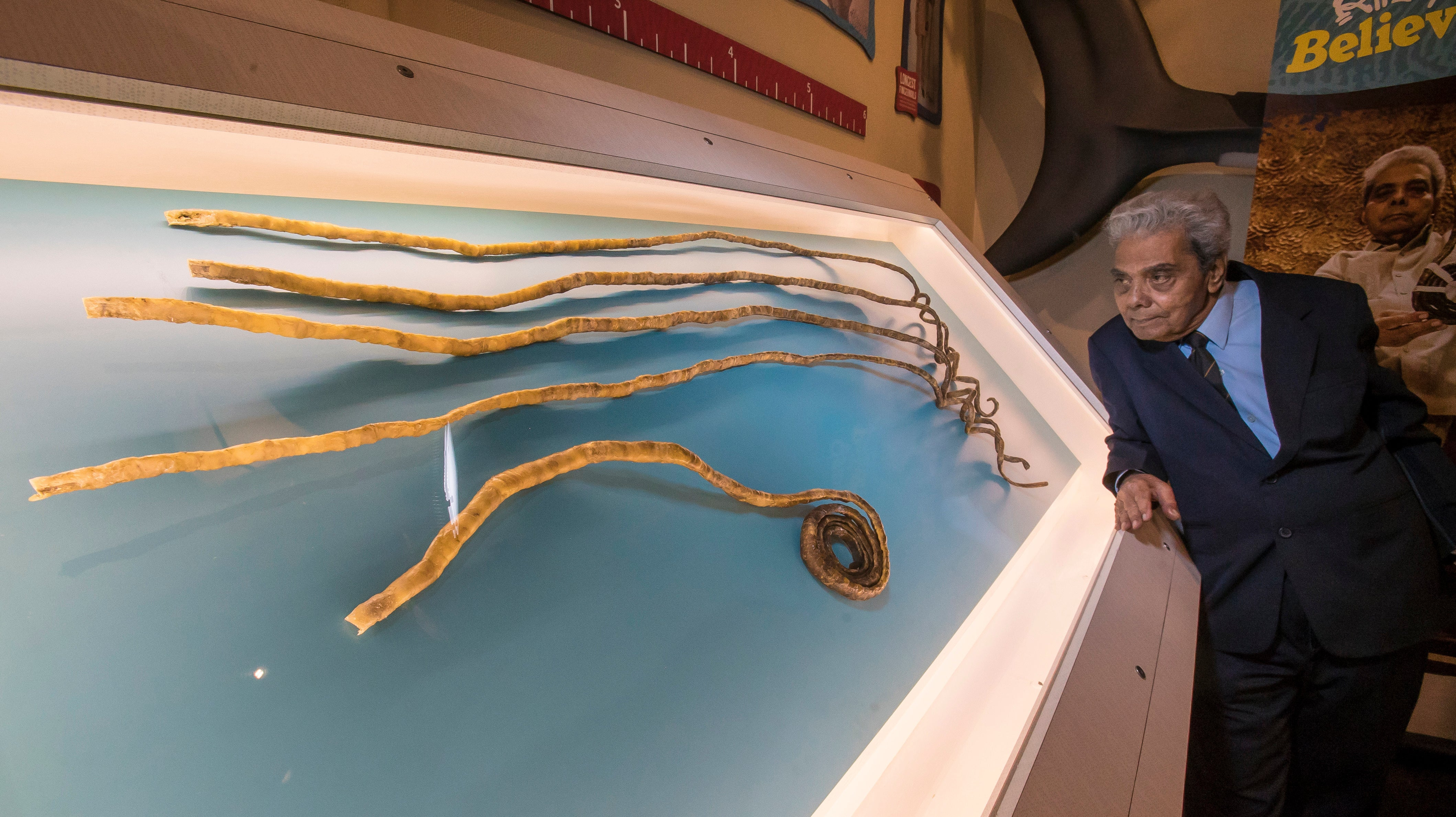 After Growing World\'s Longest Nails Out Of Spite, Man Sells 30-Foot ...