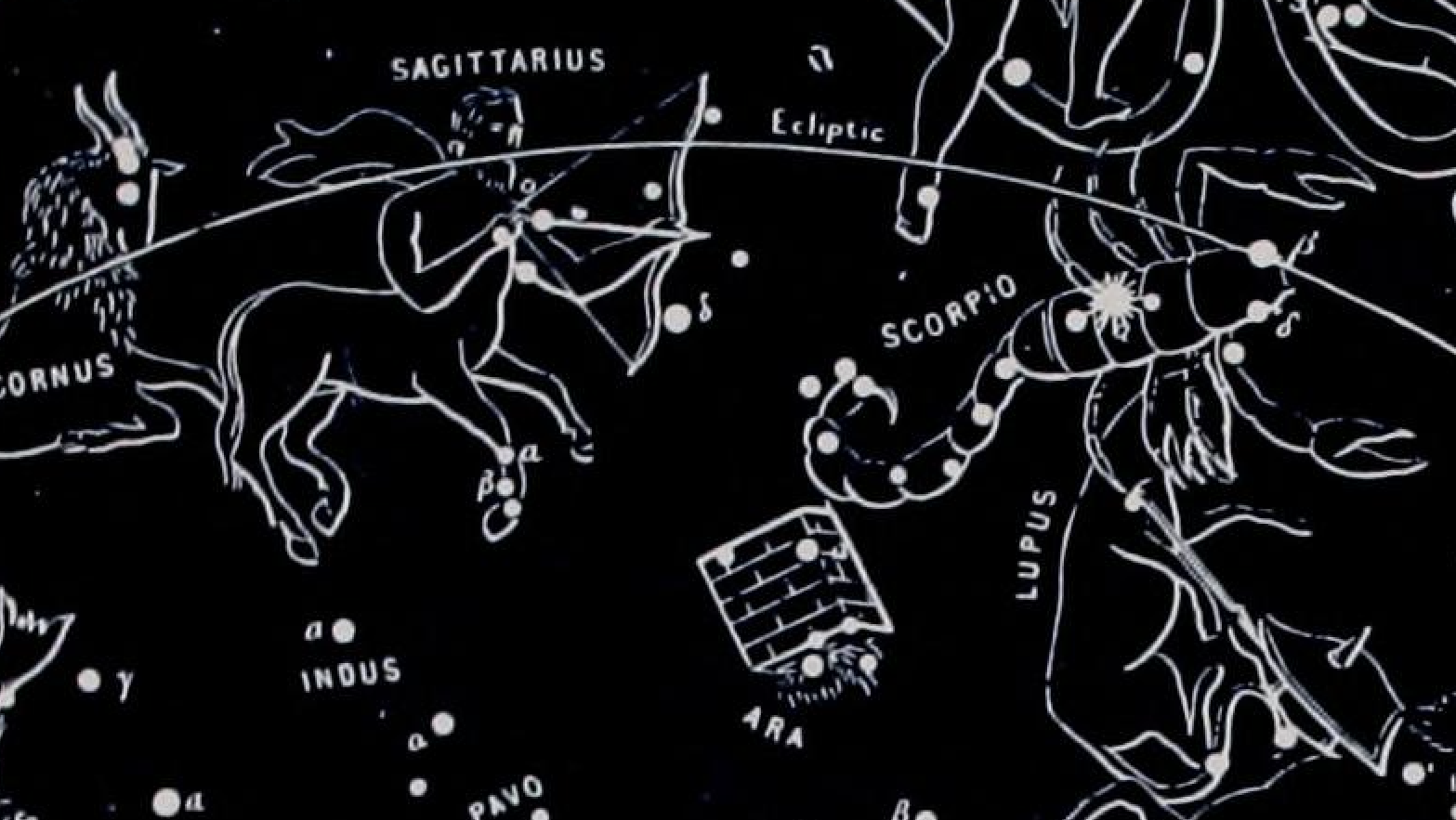What Knowing Your Astrological Sign Is Actually Useful For