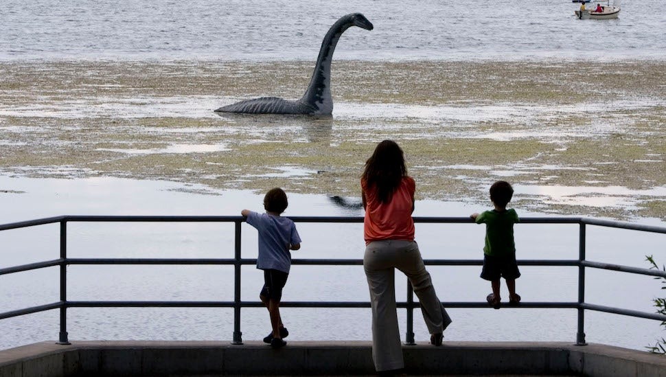 Long Lost Monster Found in Loch Ness (But Don't Freak Out)