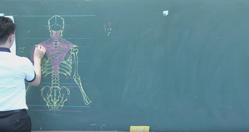 Teaching Human Anatomy With Chalkboard Art Kotaku Australia