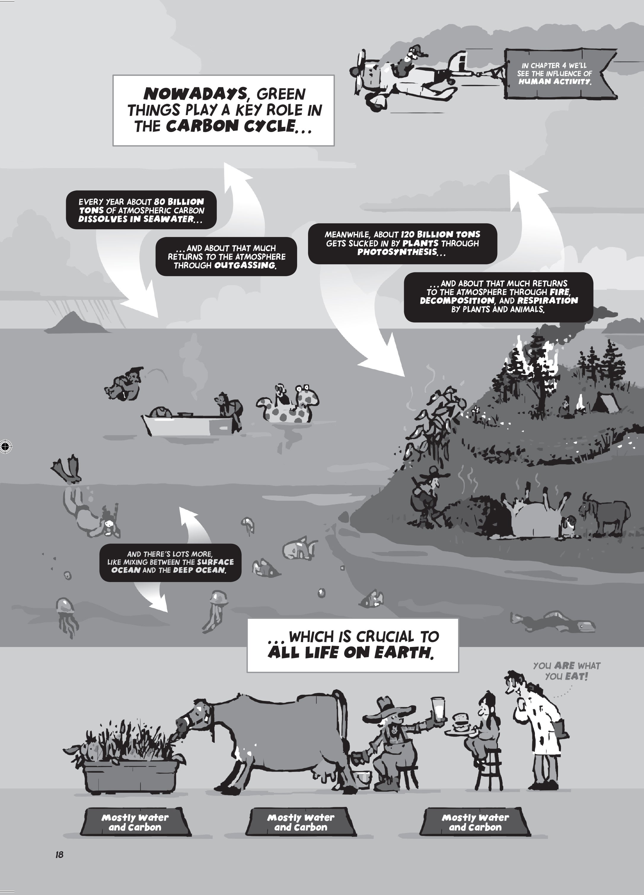 A Brief Cartoon History of Planet Earth