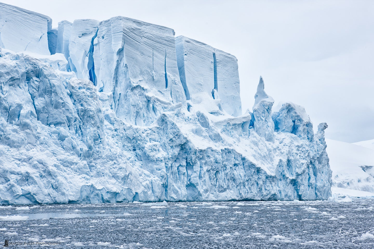 Antarctic ice looks so tempting as summer temperatures soar