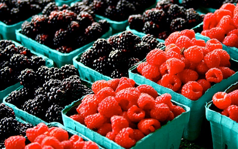 The Container Your Berries Come In Can Tell You About Their Health
