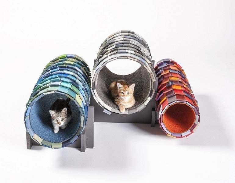 Architects Designed These Intricate Cat Shelters Because Cats