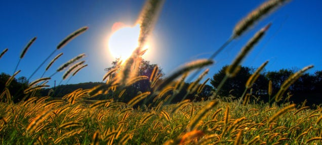 Ensuring Global Warming Stays Below 2C Isn't Enough, Say Scientists