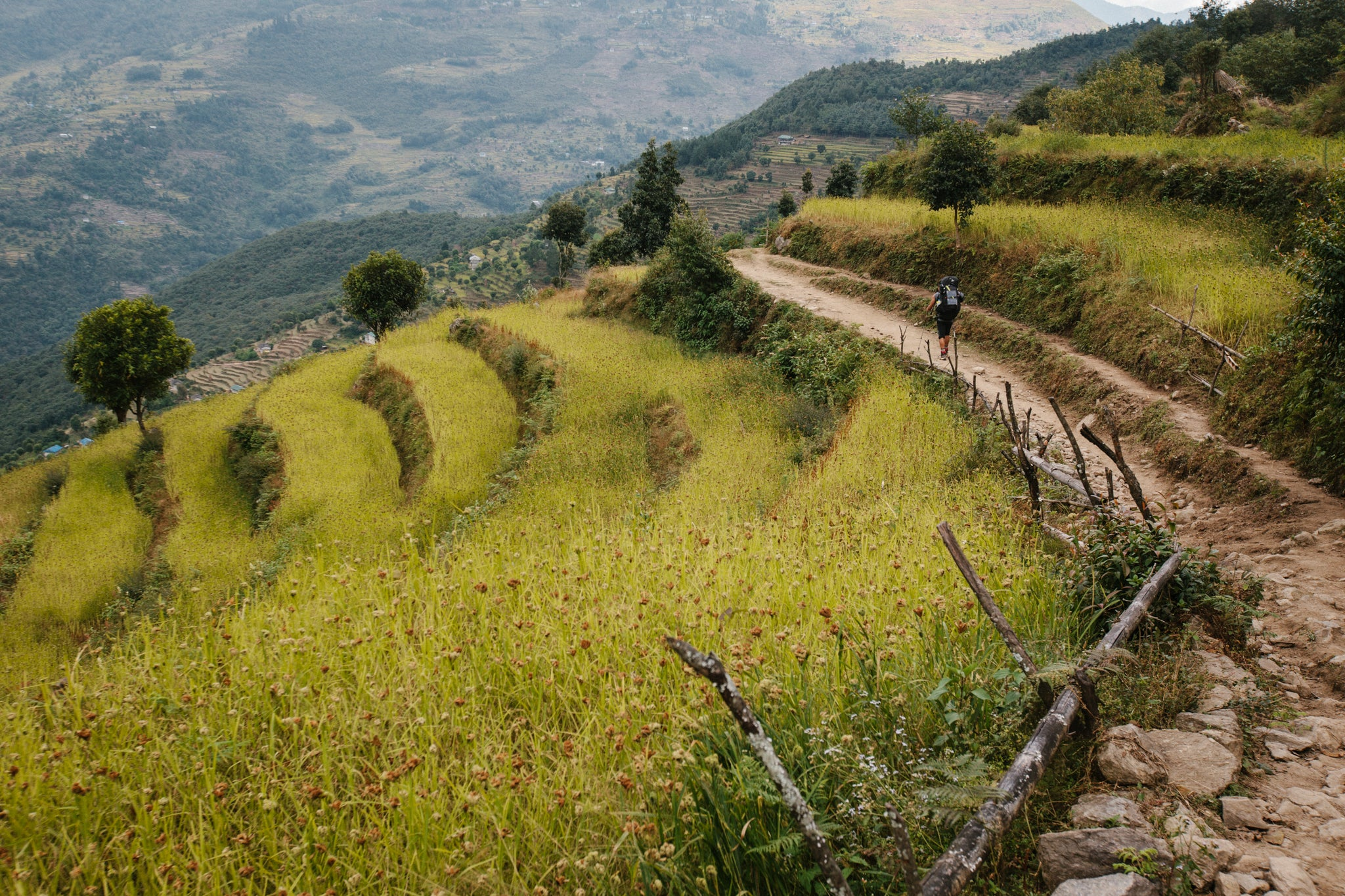 Hiking Nepal In Edmund Hillary's Footsteps