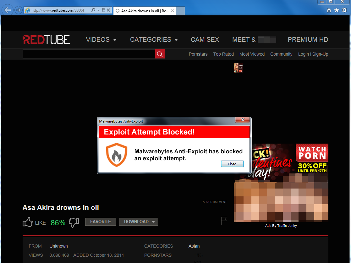 You Can Get Identity-Stealing Malware By Watching This Popular Porn Site