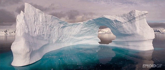 Video: The stunning still beauty of Antarctica